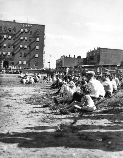 People Watching Photograph - Spectators On Grass, New York City by The New York Historical Society