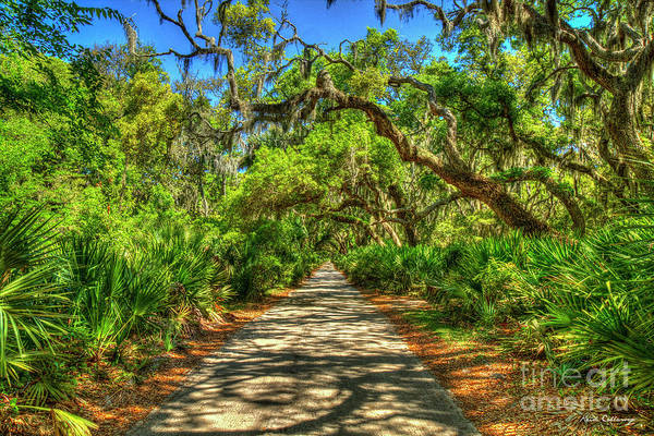 Wall Art - Photograph - Speechless Beauty Main Road Cumberland Island National Seashore Georgia Landscape Art by Reid Callaway