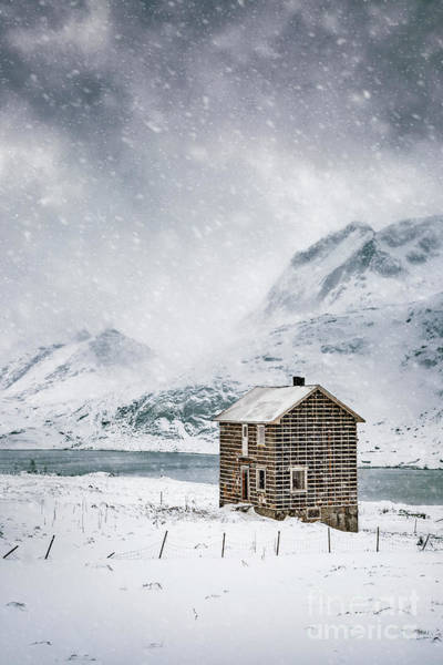 Wall Art - Photograph - Spells Of Arctic Winters by Evelina Kremsdorf