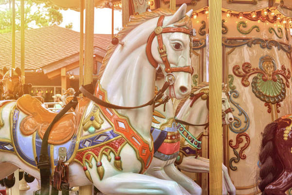 Photograph - Spinning Steed by Jamart Photography