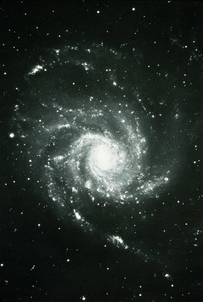 Vertical Perspective Photograph - Spiral Galaxy by World Perspectives