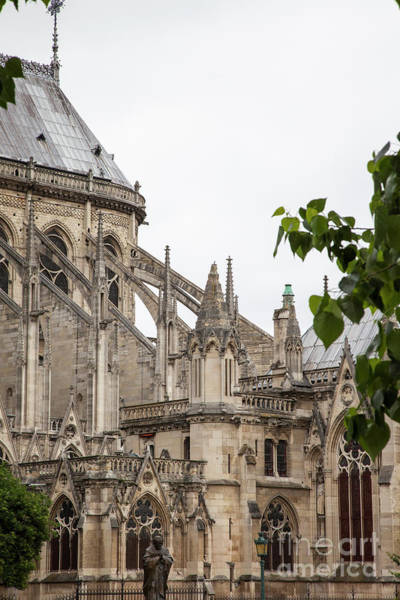 Photograph - Spires Of Notre Dame by Timothy Johnson
