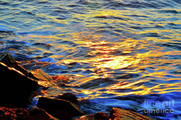 Photograph - Spirit Of The Sea II by Robyn King