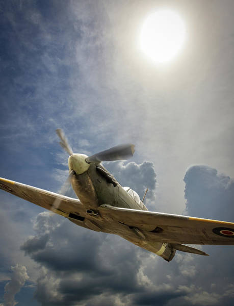 Photograph - Spitfire Under The Sun by Philip Rispin