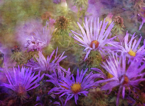 Photograph - Splash 5729 Idp_2 by Steven Ward