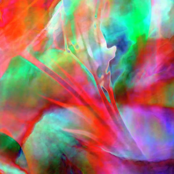 Digital Art - Splendor - Custom Version 1 - Abstract Art by Jaison Cianelli