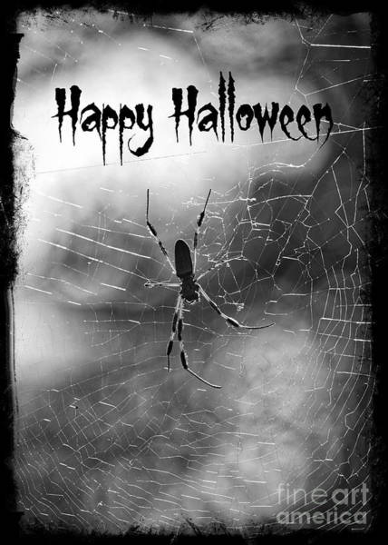 Photograph - Spooky Spider Halloween by Carol Groenen