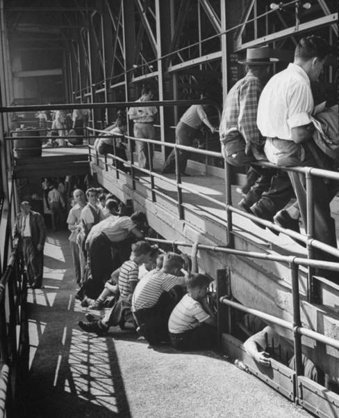 Politics Photograph - Sports Fans Attending Baseball Game At E by Ed Clark