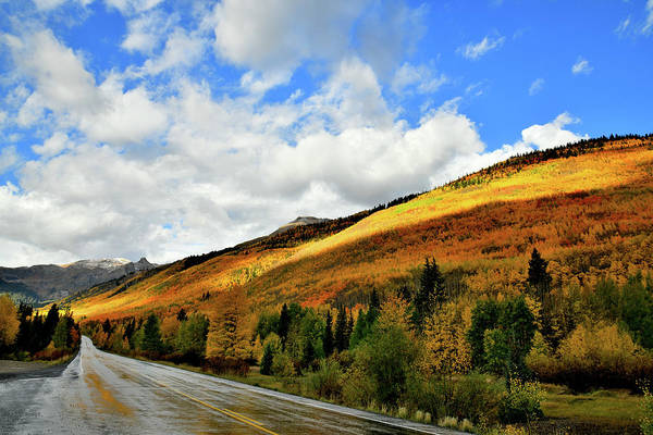 Photograph - Spotlight On Fall Colors Along Million Dollar Highway by Ray Mathis