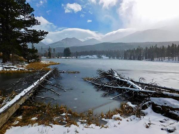Photograph - Sprague Lake by Dan Miller