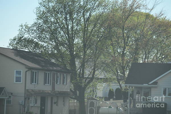 Photograph - Spring At An Amish Homestead by Christine Clark
