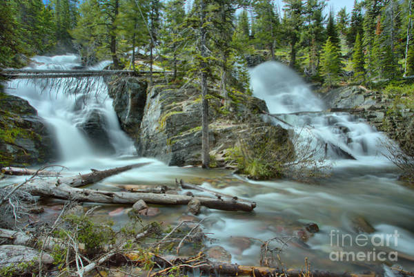 Photograph - Spring At Glacier Twin Falls by Adam Jewell