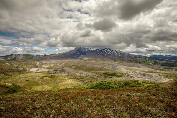 Photograph - Spring At Mt. St. Helens by M C Hood