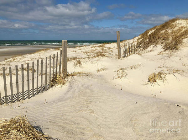 Photograph - Spring At The Beach On Cape Cod by Michelle Constantine