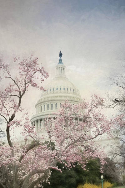 Blooming Tree Mixed Media - Spring At The Us Capitol by Lori Deiter