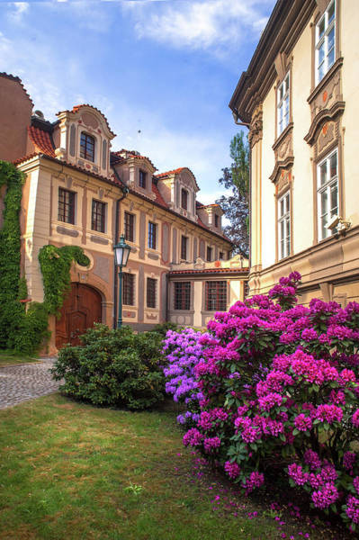 Photograph - Spring Blooms In Kolowrat Garden Prague 4 by Jenny Rainbow