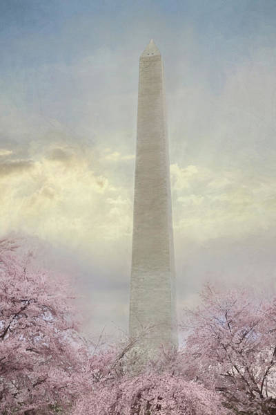 Blooming Tree Mixed Media - Spring Blossoms At The Washington Monument by Lori Deiter