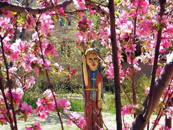 Photograph - Spring Blossoms, Santa Fe by Kurt Van Wagner