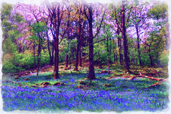 Wall Art - Digital Art - Spring Bluebell Woods by Digital Painting