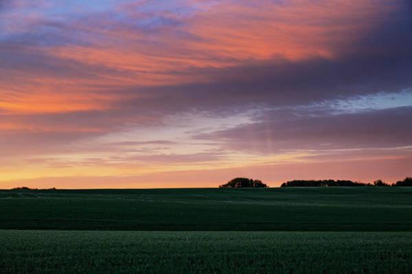 Photograph - Spring Crops by Dan Jurak