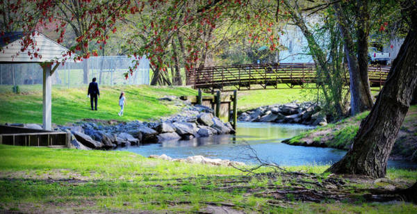 Wall Art - Photograph - Spring Day At Unicorn by Brian Wallace