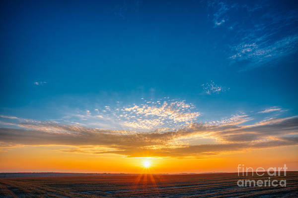 Wall Art - Photograph - Spring Field Meadow Road Under Sunset by Grisha Bruev