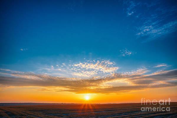 Beautiful Sunrise Photograph - Spring Field Meadow Road Under Sunset by Grisha Bruev