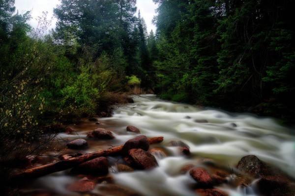 Photograph - Spring Flooded Stream by Dan Friend
