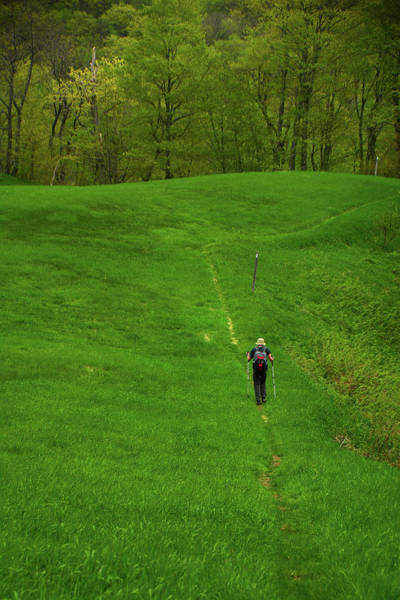 Photograph - Spring Green Hiker On The Vt At by Raymond Salani III