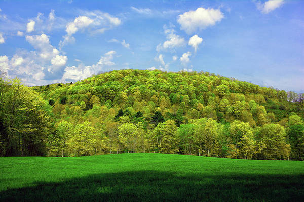 Photograph - Spring Green In Vermont On The Appalachian Trail by Raymond Salani III