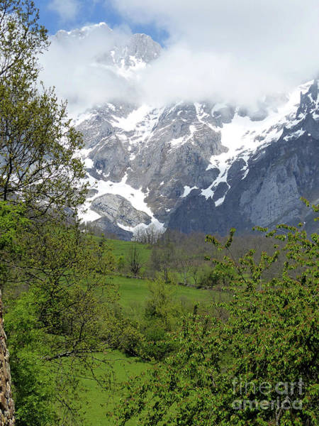 Photograph - Spring In The Picos De Europa by Phil Banks