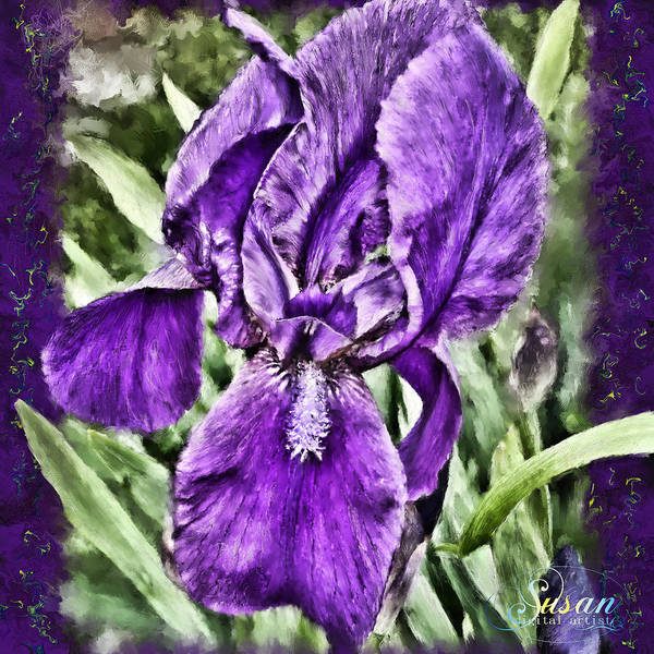 Digital Art - Spring Iris by Susan Kinney