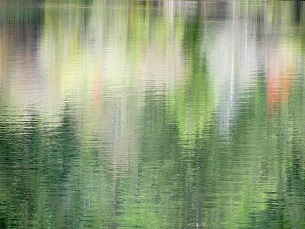 Spring Lake_3874_12 Art Print