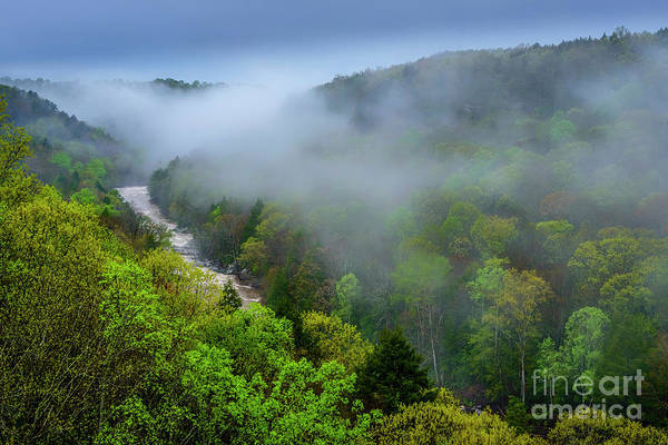 Photograph - Spring Morning Meadow River by Thomas R Fletcher