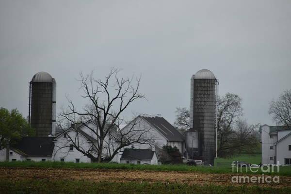 Photograph - Spring On An Amish Farm by Christine Clark
