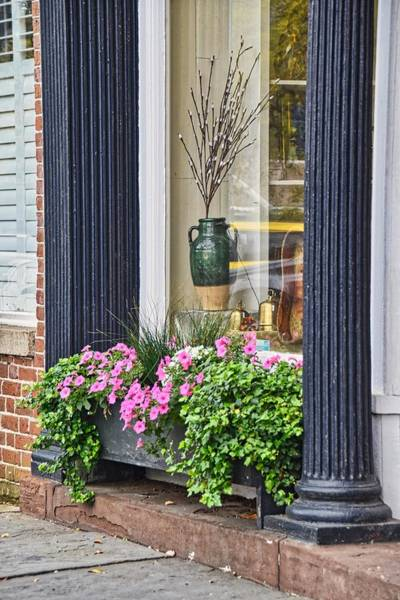 Wall Art - Photograph - Spring Planter by Linda Brown
