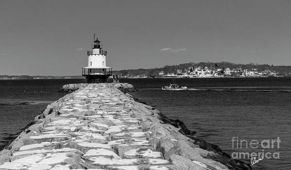Photograph - Spring Point Ledge by Alana Ranney