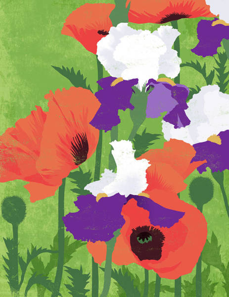 Freshness Digital Art - Spring Poppies by Don Bishop