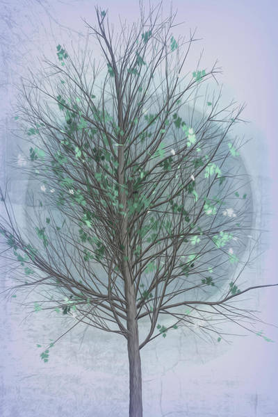 Digital Art - Spring Tree In Cool Grays by Debra and Dave Vanderlaan