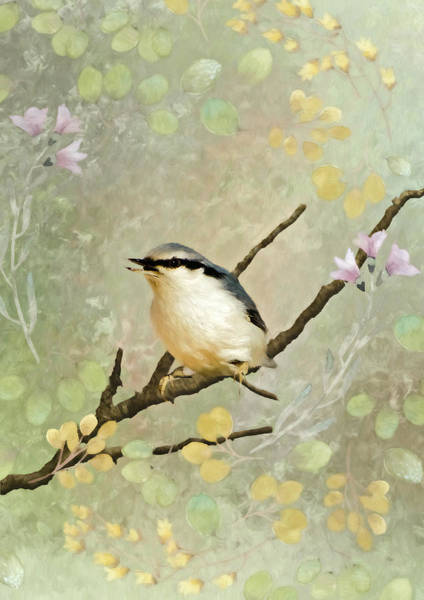 Bird Watercolor Mixed Media - Spring Unfolding I by Amanda Lakey