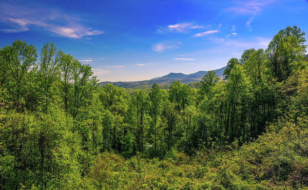 Photograph - Spring Valley In The Smoky Mountains by Dan Sproul