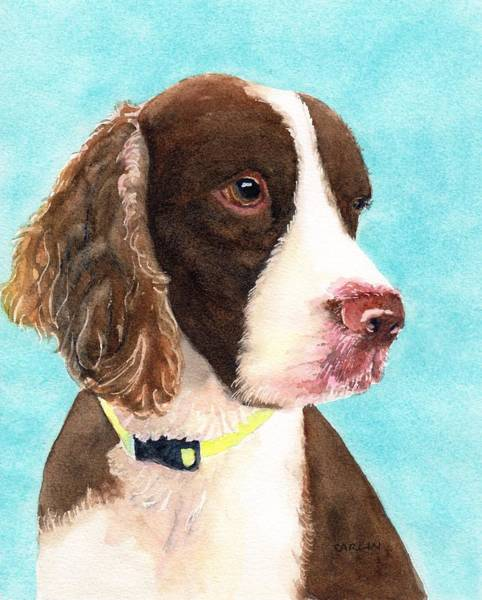 Welsh Springer Spaniel Painting - Springer Spaniel Portrait by Carlin Blahnik CarlinArtWatercolor