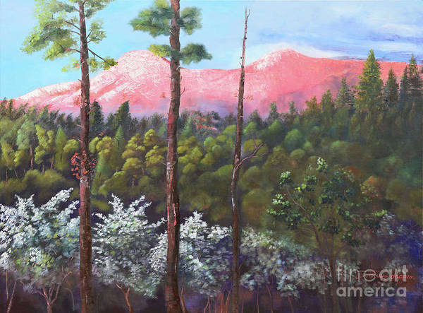 Painting - Springtime At Pink Knob - Large Canvas - Ellijay by Jan Dappen