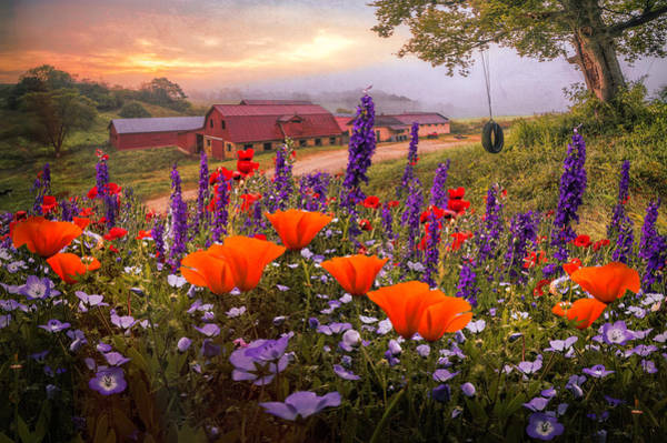 Photograph - Springtime At The Farm by Debra and Dave Vanderlaan