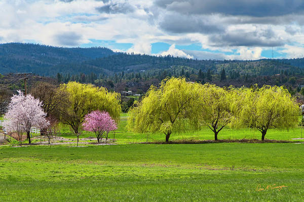 Photograph - Springtime by Dan McGeorge