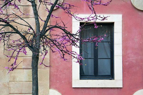 Springtime In Ciutadella - Saludos De La Primavera Art Print