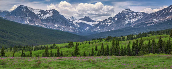 Photograph - Springtime In The Rockies by Kristen Wilkinson