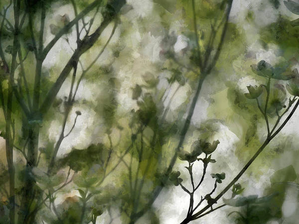 Wall Art - Digital Art - Springtime In Upstate Ny 1 by Tina Baxter