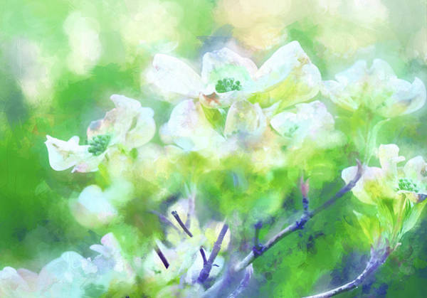 Wall Art - Digital Art - Springtime In Upstate Ny 11 by Tina Baxter