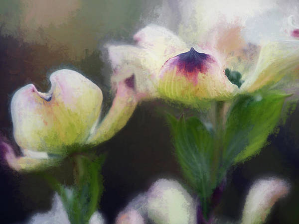 Wall Art - Digital Art - Springtime In Upstate Ny 12 by Tina Baxter